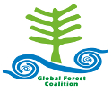 Gráfica alusiva a Global Forest Coalition